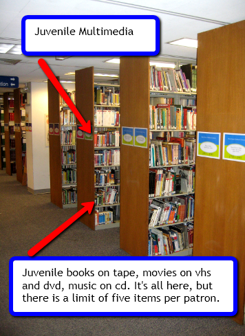 Juvenile Multimedia Items