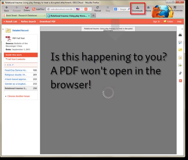 pdf won't open1